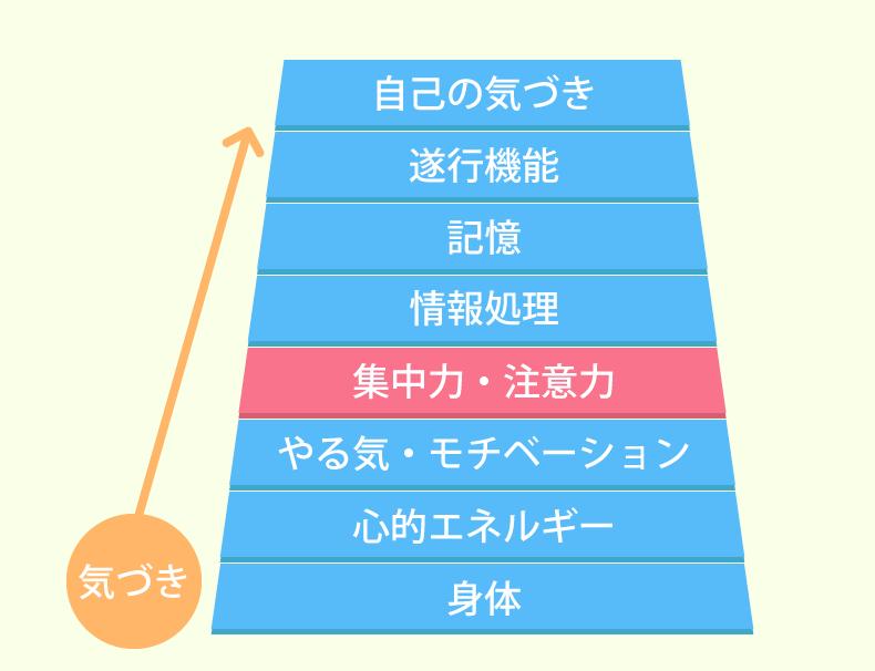神経心理ピラミッド