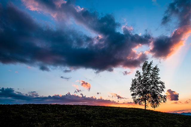 北海道美瑛の夕陽