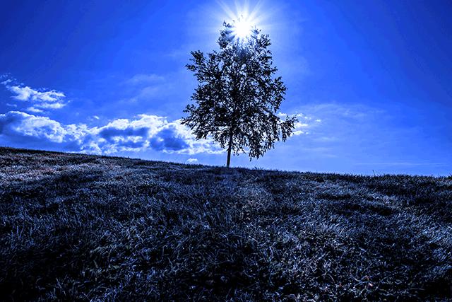 北海道美瑛の風景のブルーフィルター写真