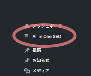 All in One SEO Packの設定箇所