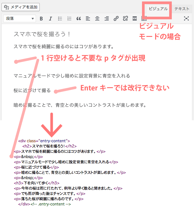WordPressのビジュアルード