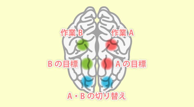 マルチタスクで使う脳の領域