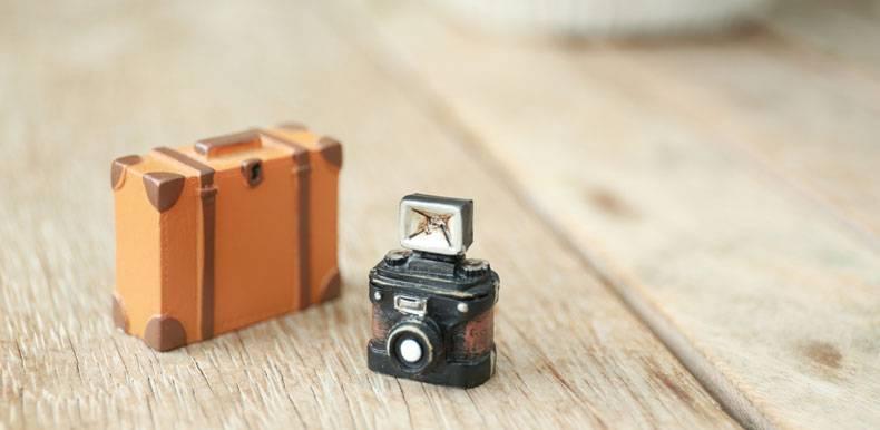 トランクとカメラ