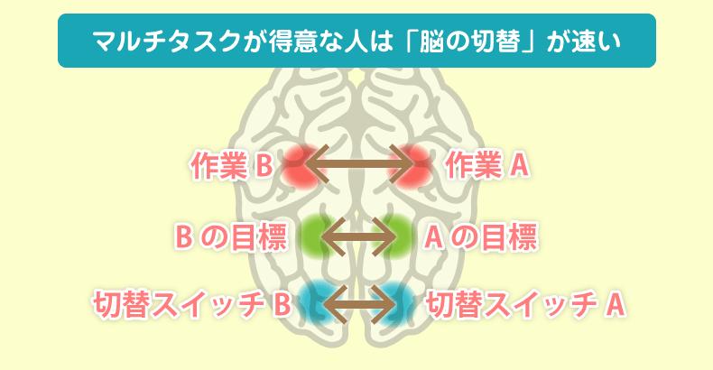 マルチタスクが得意な人の脳
