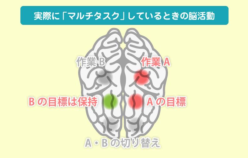 実際に「マルチタスク」しているときの脳活動